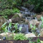 Waterfall and Water Garden