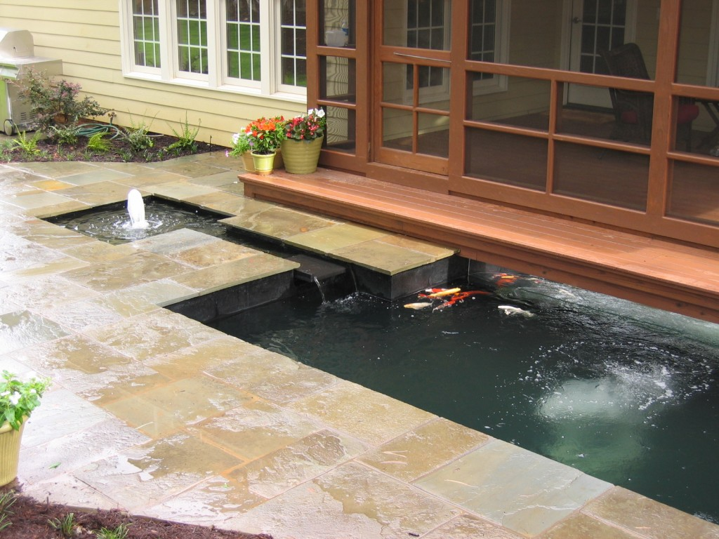 Raleigh Koi Pond And Landscape Renovation Bluestone Patio